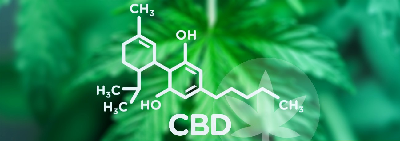 Purchasing CBD Oil: Top Things To Look Out For